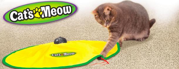 juguete de gato automática